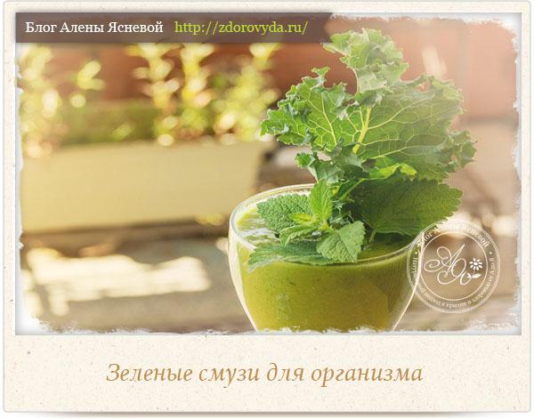 рецепты коктейлей из листьев сельдерея