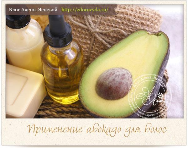 Плод и масло авокадо для волос
