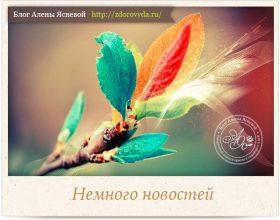 Миниатюра к статье Новости, эстафета «Читающий блоггер» и про крем с улиткой