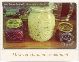 Миниатюра к статье Уникальная польза квашеных овощей— рецепт квашеной пробиотической капусты