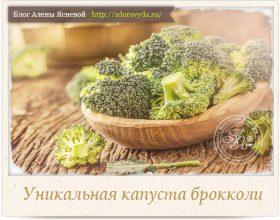 Миниатюра к статье Как правильно есть брокколи, чтобы получить максимальную пользу для здоровья
