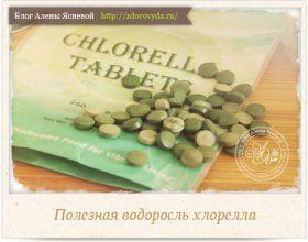 Миниатюра к статье Хлорелла—  источник нашего здоровья, молодости и красоты!