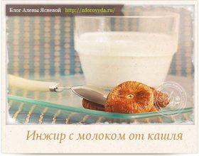 Миниатюра к статье Инжир в молоке— необыкновенно эффективный  и вкусный способ лечения кашля