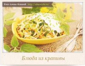 Миниатюра к статье Что можно приготовить из крапивы—  полезные рецепты на любой вкус