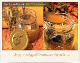 Миниатюра к статье Мед с лекарственными травами— целебный рецепт фитотерапии