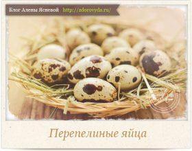 Миниатюра к статье Перепелиные яйца— чем полезны для здоровья и как их есть правильно?