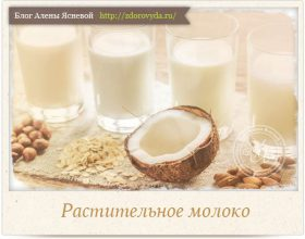 Миниатюра к статье Чем полезно растительное молоко и как его готовить правильно?