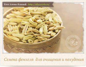 Миниатюра к статье Семена фенхеля для похудения и очищения тела