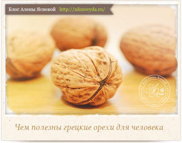 Чем полезны грецкие орехи для человека