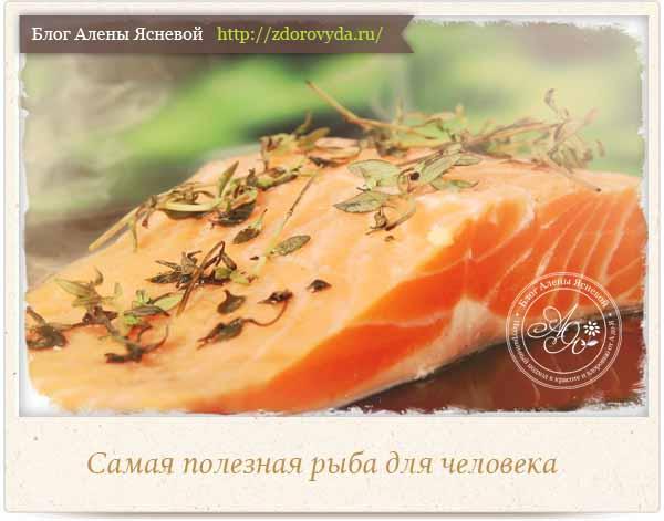 Самая полезная рыба для человека