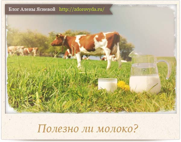 полезно ли молоко
