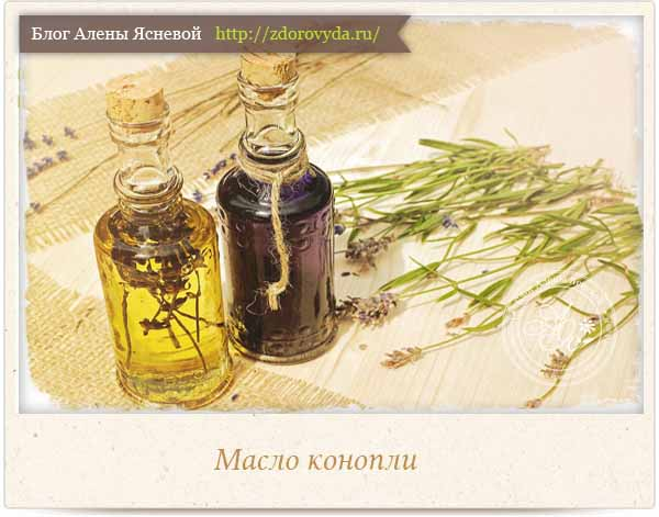 конопляное масло для здоровья