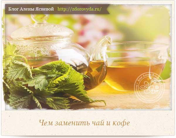 Чем заменить чай и кофе в рационе
