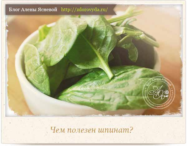 Чем полезен шпинат для человека