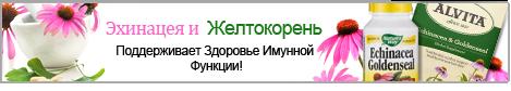 Echinacea-Goldenseal-R-83115