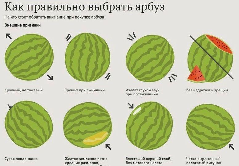 Как выбрать спелый и сладкий арбуз?
