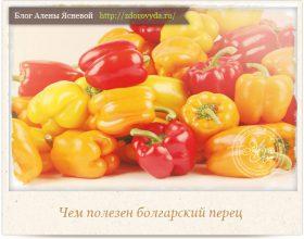 Миниатюра к статье Болгарский перец— защищает от рака и возвращает зрение!