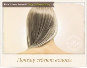 Миниатюра к статье Почему появляются седые волосы  и как избавиться от них без окрашивания?