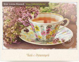 Миниатюра к статье Душистый чай из душицы— все про то, чем полезен, как заваривать и как пить