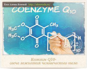 Миниатюра к статье Коэнзим Q10 -замедлитель процессов старения и увеличитель энергии нашего тела