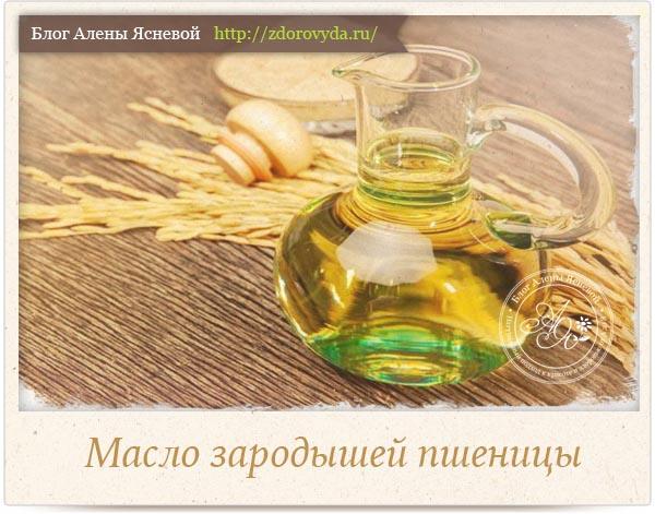 Масло зародышей пшеницы - полезные свойства и применение